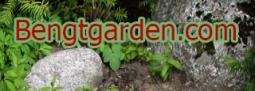 Beng-T-Garden